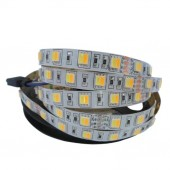 5050 SMD WW+CW LED Strip Color Temperature Adjustable 60LED/m CCT Light 5M
