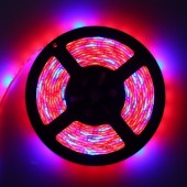 LED Grow light Full Spectrum 5M Strip 5050 For Greenhouse Hydroponic Plant Growing
