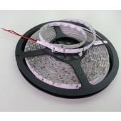 3528 LED Strip 24V 60LED/M SMD3528 LED Lighting Stripe